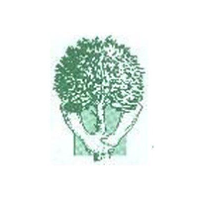 Amenity Trees