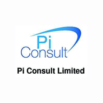 PI Consult